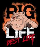 Thug Pig illustration. Illustration and text design of a tough cartoon pig, ideal to wear in public as a T-shirt Royalty Free Stock Photos