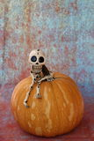 THUG SKELETON SITTING ON A HALLOWEEN PUMPKIN. A little thug skeleton sitting on a  Halloween pumpkin in a vertical image with a mottled background Royalty Free Stock Photography