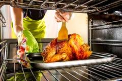 Thuis kokend kip in de oven stock fotografie