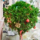 Thuja in vorm van een bal is dicht verfraaid als verbinding van een Nieuwjaar met rood ballen en boomspeelgoed op de straat en stock afbeelding