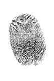 Thumb fingerprint. Black on white isolated fingerprint Royalty Free Stock Image