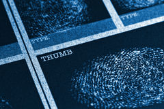 Thumb Fingerprint File. Concept image of a fingerprint file Royalty Free Stock Photo