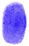 Thumb Print. A Thumb Print in a white background Royalty Free Stock Photos
