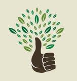 Thumb tree Logo. Thumb tree abstract with leaves royalty free illustration