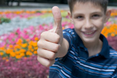 Thumb up!. A boy is holding his thumb up sitting in the flowers Stock Photo