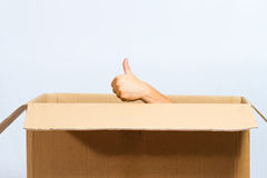 Thumb Up Box Royalty Free Stock Image