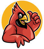 Thumb up cardinal. Vector of cheerful cardinal bird show the thumb up sign stock illustration