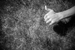 Thumb up on the grass Royalty Free Stock Photos