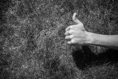 Thumb up on the grass Stock Photography