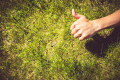 Thumb up on the grass Stock Photo
