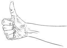 Thumb up hand sign, detailed black and white lines vector illust. Ration, hand drawn Stock Photography