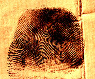 Thumbprint Stock Images