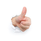 Thumbs up. On a white bg royalty free stock photo
