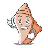 Thumbs up cute shell character cartoon Royalty Free Stock Photography