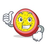 Thumbs up passion fruit character cartoon. Vector illustration Stock Image
