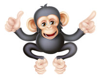 Thumbs Up Pointing Monkey Chimp Stock Photos