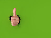 Thumbs up punching through green paper Royalty Free Stock Photos