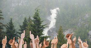 Thumbs up trees. Digital composite of Thumbs up trees Royalty Free Stock Photography