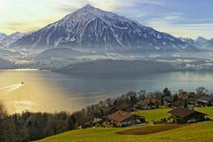 Thun湖视图在冬天 免版税库存图片