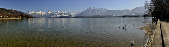 Thun lake with Berner Oberland. Royalty Free Stock Photo