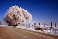 Thunder City Road - Winter 7. Icy rural road in Valley County Idaho, Winter Stock Photo