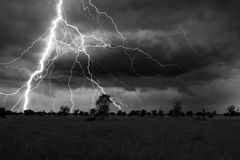 Thunder and lightnings during summer storm on meadow Stock Image