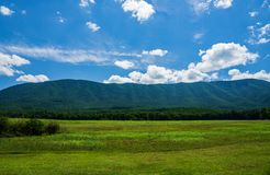 Thunder Ridge from Arnold Valley. A view of Thunder Ridge from an open field located in Arnold Valley, Rockbridge County, Virginia, USA Royalty Free Stock Photography