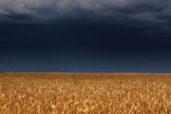 Thunder sky above field Royalty Free Stock Photography
