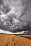 The thunder-storm Stock Images