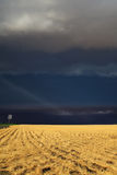 The thunder-storm in a countryside Royalty Free Stock Photo