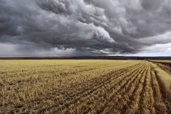 Thunder-storm. Fields after harvest Royalty Free Stock Images