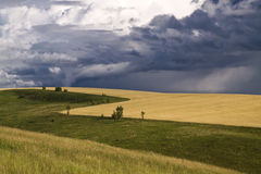 Thunder-storm over a field Royalty Free Stock Photography