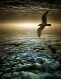 Thunderbird Royaltyfri Bild