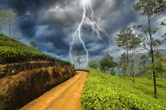 Thunderbolt in country Royalty Free Stock Images