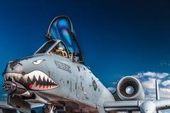 Thunderbolt II da república A-10 de Fairchild imagem de stock