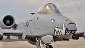 A-10 Thunderbolt II/Warthog Royalty Free Stock Images