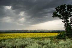 thundercloud Στοκ Εικόνα