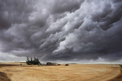 The thundercloud on fields Stock Photos