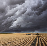 The thundercloud on fields of Montana Stock Photography