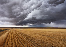 Thunderclouds über Feldern Stockfoto
