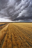 Thunderclouds above  Montana Royalty Free Stock Photo