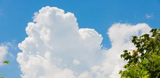 Thunderhead del verano Imagen de archivo libre de regalías