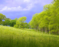Before thunderstorm stock image