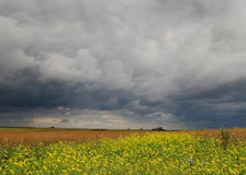 Before thunderstorm. The fields before thunderstorm. Nature of Russia Stock Photography