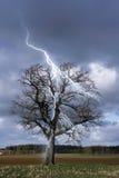 thunderstorm Fotografering för Bildbyråer