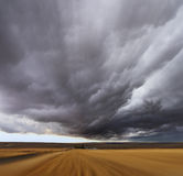Thunderstorm above fields Stock Images