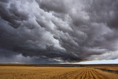 Thunderstorm above fields after harvesting. Stock Photos