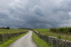 Thunderstorm above Vinyard Saint-Emilion Stock Image