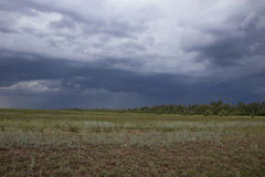 Thunderstorm in green steppe with dark blue clouds and rain Stock Photography