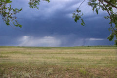Thunderstorm in green steppe with dark blue clouds and rain Royalty Free Stock Photos